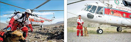25528 241 سگی که جان زلزله زدگان را نجات داد +تصاویر