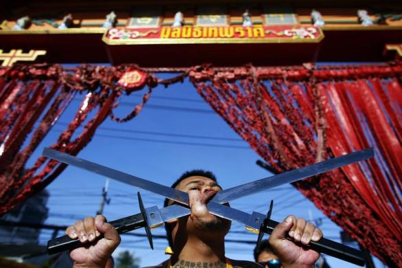 نمایش دلخراش گیاهخواران تایلند