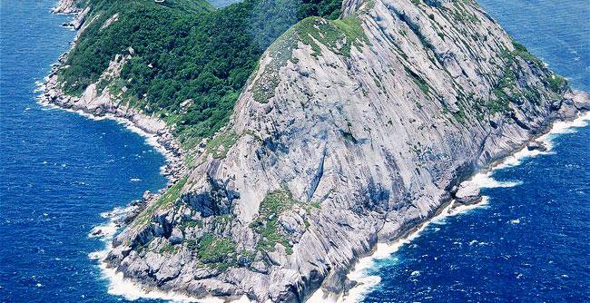 سمیترین مار سم مار خطرناکترین مار خطرناکترین حیوان جزیره مار Bothrops insularis