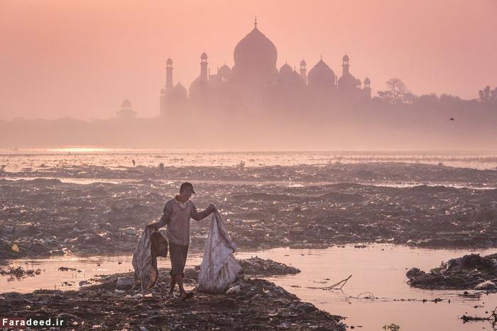 (تصاویر) مسابقه عکاسی محیط زیستی «اتکینز»