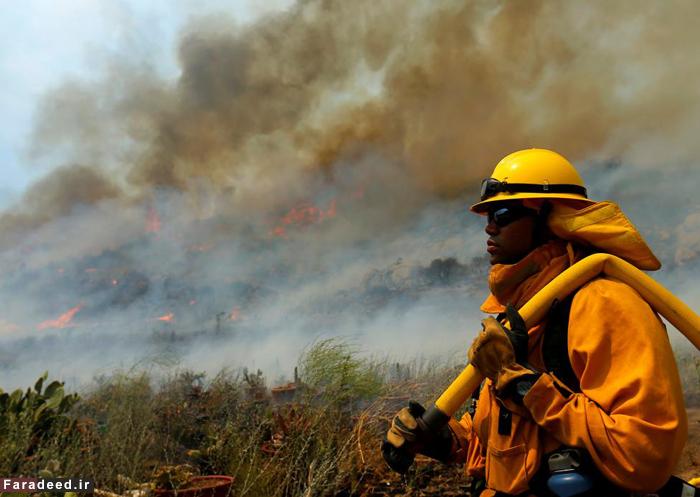 (تصاویر) جنگلهای کالیفرنیا میان آتش