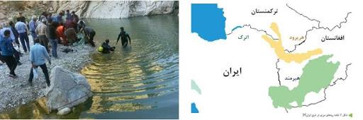 افشاگری رسانه افغان از حادثه تلخ مهاجران در مرز ایران