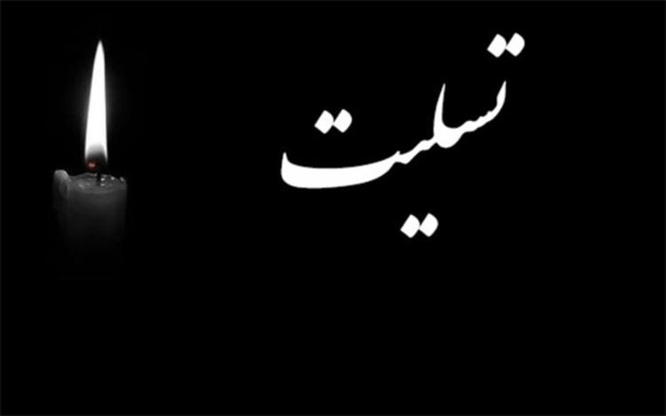 دبیر کل مجمع خیرین سلامت درگذشت خیر نیک اندیش حاج محمد خجسته را تسلیت گفت
