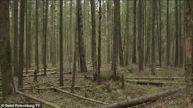 کشف جسد زن زنده بگور شده در جنگل