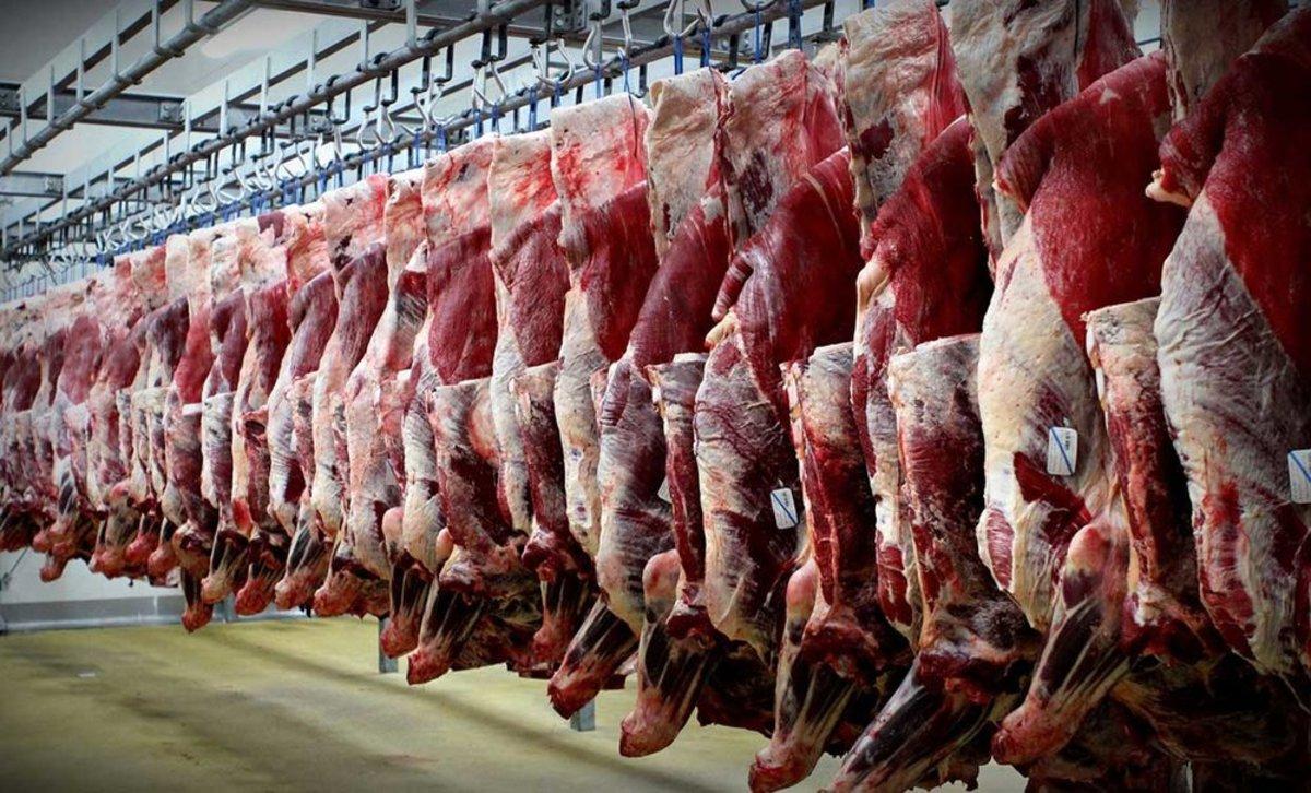 تورم ۵۶ درصدی قیمت گوشت قرمز