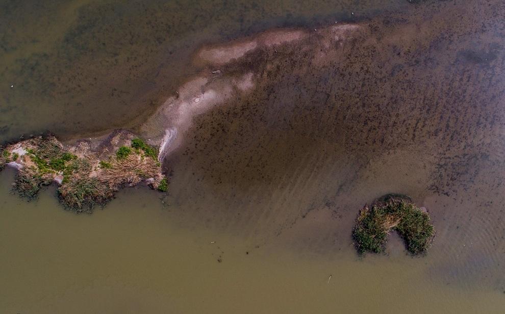 resized 904038 776 - مرگ تدریجی تالاب انزلی؛ از بزرگترین زیستگاههای طبیعی ایران