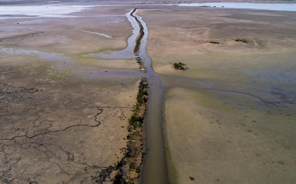 resized 904039 910 - مرگ تدریجی تالاب انزلی؛ از بزرگترین زیستگاههای طبیعی ایران