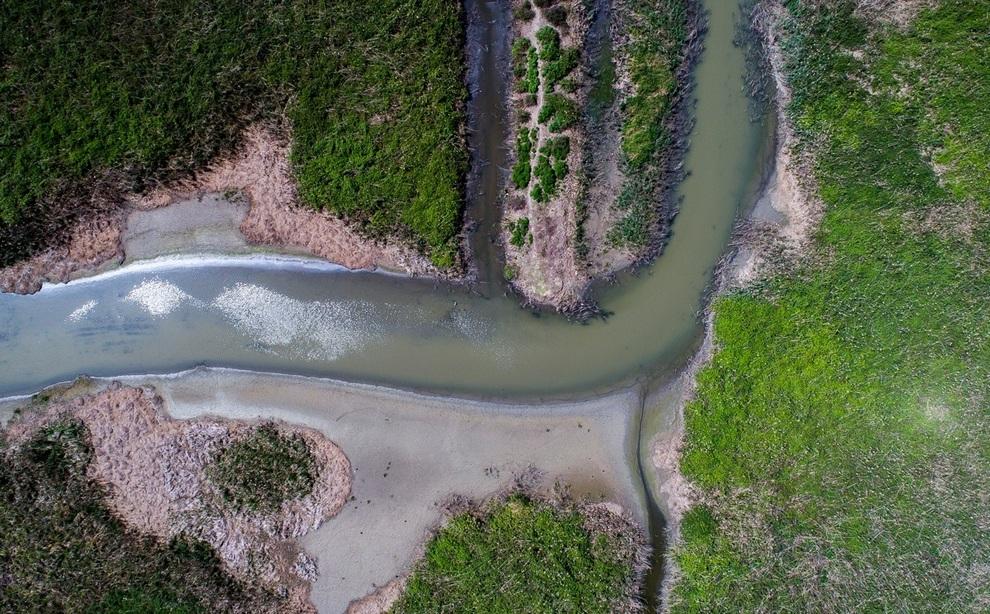 resized 904042 170 - مرگ تدریجی تالاب انزلی؛ از بزرگترین زیستگاههای طبیعی ایران
